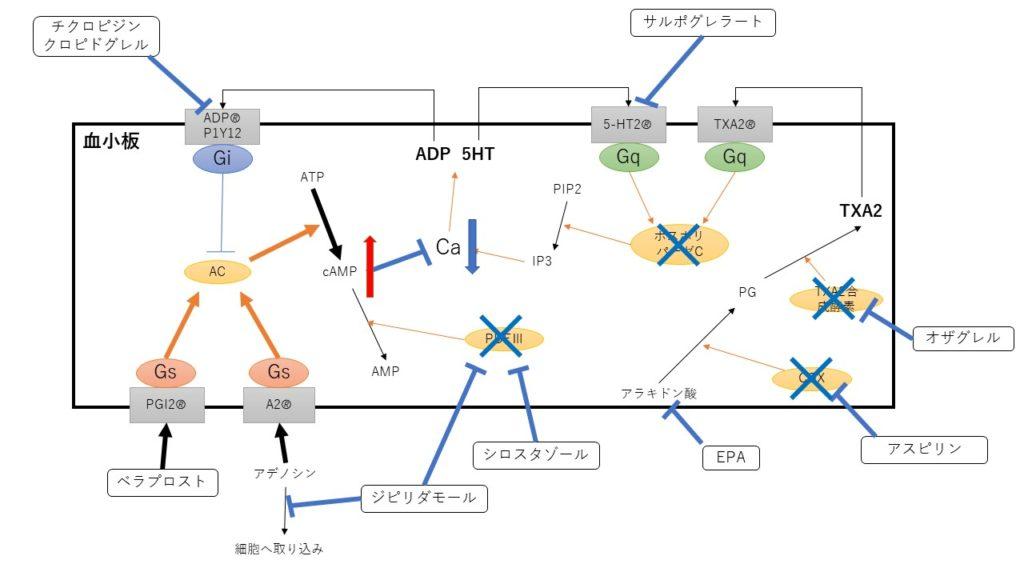 抗血小板薬の作用機序